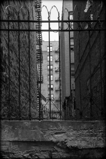 Courtyard, near Anderson Ave., West Bronx, 2012.  Note the traditional New York City fire escapes and the razor wire atop the original wrought iron fencing. (Fuji X100) Click to enlarge.