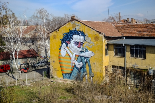 Mural, warehouse, Poduyane quarter, Sofia, Bulgaria, 2016. FujiX100 w/1.4x tele converter. Click on image to enlarge.